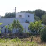 alten Bauernhaus aus Stein mit Olivenbäumen zum Verkauf in der Nähe von Ostuni