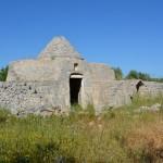Antico trullo con alberi di ulivo nelle campagne di Carovigno
